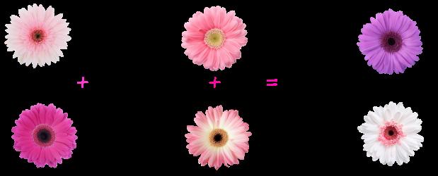 formula for dewy-ness